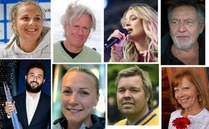 Nilsson, Borg, Larsson, Lundell, Ismail, Sjöström, Brolin och Lindfors är exempel på fria efternamn som bärs av mer än 2 000 personer i Sverige.