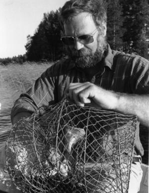 Ort: Bergsjö   Rubrik: Nu är det KRÄFTOR som gäller.   Bildtext: Paul Burman, ordförande i Bergsjö fiskeområde, var också ute och kollade läget, när årets första kräftor halades upp. Ganska snart fanns det besökare i burarna.