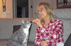 Segern i Årets Lussekatt firades med räkor, berättar Monica Höglund.