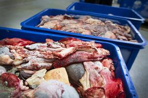 Hundfodret finns i olika varianter, men allt är gjort av slaktbiprodukter, och mestadels från nöt men finns även varianter med fisk.