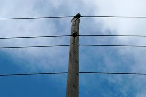 Post- och telestyrelsen, som jobbar för att hela landet ska ha bra kommunikationer, känner till problemen i Strömsunds kommun.