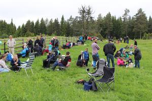 Många hade med sig picknick-korgar och solstolar.