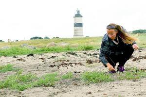 På västkusten i Glommen söker Caroline nya former och ideér från havet.