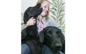 Kopparjyckens ägare Linda Pers med sina hundar Viggo och Mynta. Foto: Mikael Forslund
