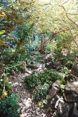 På slingriga, nyrensade, stigar tar man sig runt i trädgården på Högamovägen.