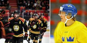 Jesper Boqvist är inställd på Brynäs även nästa säsong.