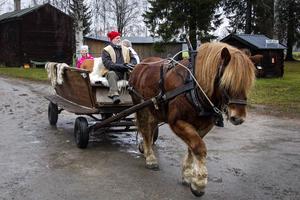 Janne Fack och hästen Boy erbjöd en tur med häst och vagn.