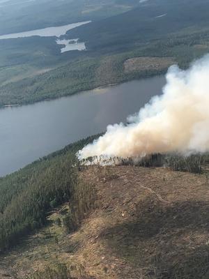 Flygbild från branden vid Grötingen. Fotat vid lunchtid på onsdagen. Foto: Harald Paulsson/ Privat. Brandflyget finansieras av länsstyrelsen. Piloterna ställer upp ideellt genom Frivilliga flygkåren