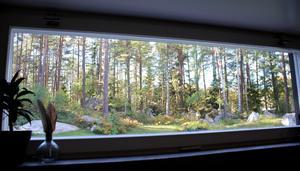 Som en tavla. Spektakulär utsikt mot skogen.