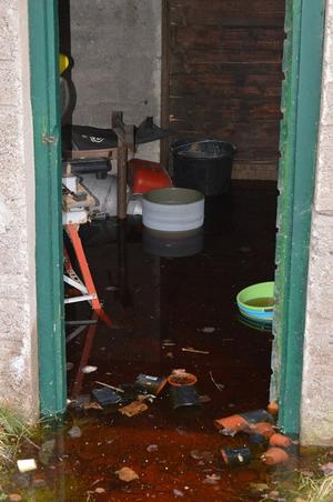 Siv har drabbats av översvämningar i sin källare. Foto: Privat