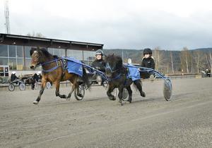 Team Sandberg, stor och liten ponny
