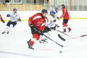 2015 hade Örebro ett damlag i division 1. Målet på sikt är att det ska finnas ett SDHL-lag i stan. Arkivbild: Daniel Patiño Flor