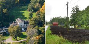 Kungliga Hagaparken (t.v.) är ett känt exempel på en engelsk park, och Hallstaviks version (t.h.) kommer sannolikt bli minst  lika picknickvänlig när gräset växer upp. Foto: TT och Ellinor Gotby Eriksson