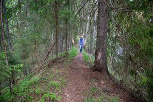 Storslagen natur och ett paradis för fåglar möter dig några hundra meter från vägen mellan Rälta och Västannor i narurresrvatet Djupbäcka.