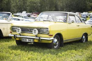 Över 300 bilar ställde ut på bilträffen i Ärstaparken.