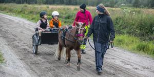 Här hade Edvin Ramsell fått ta över tömmarna samtidigt som Elma Hallström hade många frågor till Hammerdals Travklubbs Jennifer Hansson och Karolina Litzell som ledde ponnyn Månstorps Opal.