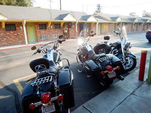 Bild: Bild: Privat fotat av Roffe Persson, Ulf Westin och Paul Fogelman. Hicks Motel, Clarksdale, Mississippi, hojarna utanför dörren.