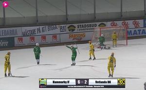 Adam Gilljam har precis gjort 6–2 för Hammarby vilket också blev slutresultatet i den första kvartsfinalen hemma mot Vetlanda. Bild: Bandyplay.se.