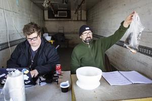 Mattias Sundberg och Jan Nyqvist väger in fiskar i sekretariatet.