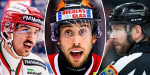 Bild ifrån kvällen då Stransky skrotade Palushaj resterande hockeyvår. Bild: Montage/Bildbyrån