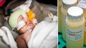 På avdelning 45, neonatalavdelningen på Sundsvalls sjukhus, behandlas för tidigt födda och nyfödda sjuka barn. Bild: Viktor Sjödin