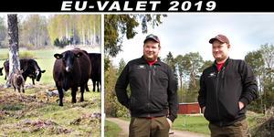 Stödet från EU bidrog till att Gunnar och Klas Persson vågade ta över gården och satsa på lantbruket.