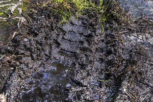 Terrängkörningslagen finns för att skydda mark och växtlighet, då terrängkörning kan åsamka stora skador i naturen.