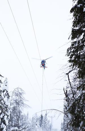 Helikoptrar hjälper just nu till med att röja i Roslagen efter stormen Alfrida.Foto: Vattenfall