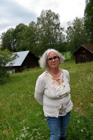 Några hästar finns inte längre hos Birgitta Lillpers – men grannen har några stycken.