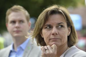 Miljöpartiets kamp för snabbtåg är viktig för Sverige. Foto: Janerik Henriksson / TT