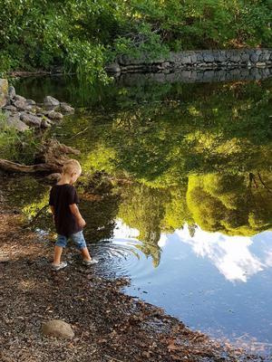 Mitt barnbarn Gaston ville bada ena foten med sin sko på, det var i Alvikssjön, vi var i en trollsk skog i närheten av Tyresö. En fantastisk miljö runtomkring sjön. Det var i början på augusti, så det är ett fint sommarminne. Foto: Annelie Gréen.