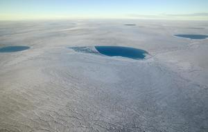 Grönlands smältande is är en sinnebild av klimatförändringarna. Inget vet riktigt vad konsekvenserna blir av en uppvärmning som överskrider 1,5 grader. Bild: Nick Cobbibg