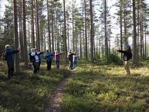 Vid STF:s Shirin Yoko/skogsbadkvällen blev det övningar med ledaren Åsa till höger. Foto: Kurt Söderlund