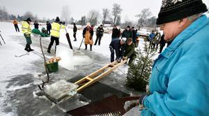 Issågning på Ludden, Acke i vit lammskinnsmössa. Arkivbild: 2012.