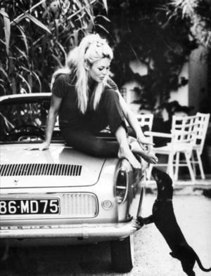 Birgitte Bardot och hennes tax i Saint Tropez, fotograferade 1962.Foto: TT