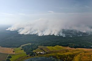 Skogsbranden i Västmanland 2014 krävde ett liv.Foto: Jocke Berglund / TT.
