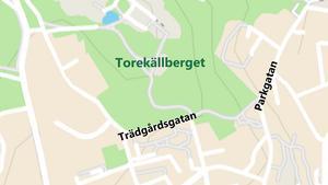 Både Trädgårdsgatan och Parkgatan ligger vid Torekällberget.