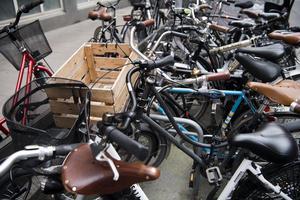 Dalfolket är dåliga på att cykla och hälften väger mer än genomsnittssvensken. Foto: Henrik Montgomery/TT