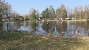 Stigen runt Lillsjön är omkring 500 meter. Om gräset får växa sig högt här kommer snokarna att trivas.
