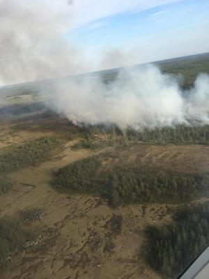 Under måndagen utbröt en skogsbrand i södra delarna av Skinnskatteberg, vid Skommarmossen. Branden spred sig under natten till ett område om 15 hektar och släckningsarbetet pågick fortfarande under tisdagen.De här bilderna togs kring 17.30-18.30 under måndagskvällen.Foto: Sebastian Soltani