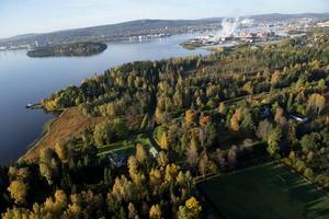 Det går inte att ta in att Petersvik med dessa ovärderliga villor riskerar att utplånas – att Sundsvallsfjärdens sista kustremsa riskerar att utplånas för all framtid, skriver Henrik Scheutz.