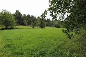 Detaljplanen för området upprättades 1968 då Edsbro tillhörde Knutby kommun. Här har kommunen 12 tomter som står redo att bli framtida bostäder.