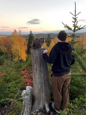 Tobias och Kissen på en höjd ovanför Bergsgården i Falun. Stubben har blivit familjens minnesplats. Foto: Privat