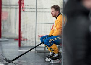 Stefan Edberg. Foto: Rikard Bäckman / Bandypuls.se / TT