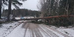 Sättravägen i höjd med Roslags-Länna IF:s klubbstuga på onsdagsmorgonen. Foto: Anders Rundkvist