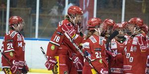 Modo Hockeys damverksamhet fyller 50 år och Modos sportchef Fredrik Glader ser ljust på framtiden. Bild: Jon Häggqvist
