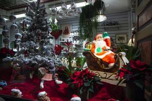 I skyltfönstret till Järvsös blomsterhandel hade det gjorts julfint lagom till första advent.