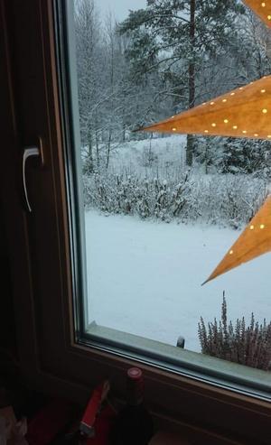 Bild från Norra Unnaryd. Foto: Malin Larsson.