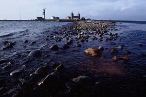 Sten Andersson begav sig 1978 till ön Nidingen för att dokumentera dess fågelliv. Foto: Sten Andersson