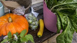 Ingen höst utan nyskördade grönsaker tyckte de flesta av besökarna.